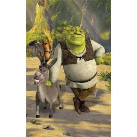 Walltastic 3D Tapeta plakát Shrek (1524 mm  x 2438 mm)